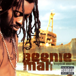 Beenie Man/Janet Jackson - Feel It boy