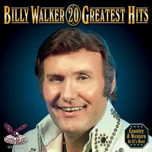 20 Greatest Hits album
