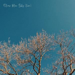 Clear Blue Sky (Live)