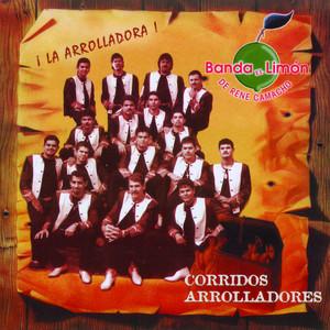 El Zorro de Ojinaga cover art