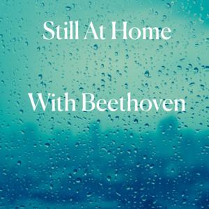 33 Piano Variations in C, Op.120 on a Waltz by Anton Diabelli: Variation XXI (Allegro con brio - Meno allegro - Tempo I) cover art