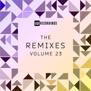 The Remixes, Vol. 23
