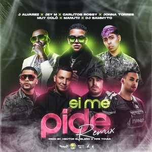 Si Me Pide (Remix)