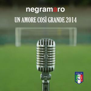 Un Amore Così Grande 2014