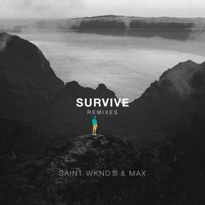 Survive - PLS&TY Remix cover art