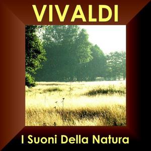 """Concerto RV 544 In Fa Maggiore-""""Il Proteo"""" O Sia """"Il Mondo Al Rovescio"""" - I Suoni Della Natura: Largo cover art"""