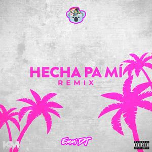 Hecha Pa' Mi (Remix)