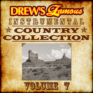Drew's Famous Instrumental Country Collection, Vol. 7 album