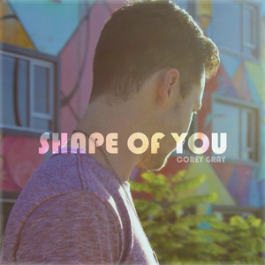 Shape of You (Acoustic)