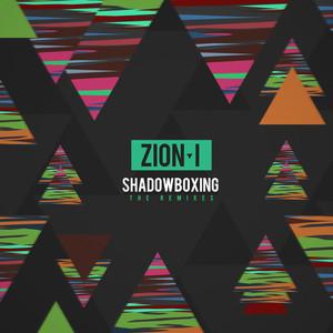ShadowBoxing (The Remixes)