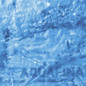 Aquafina (feat. Kap G)