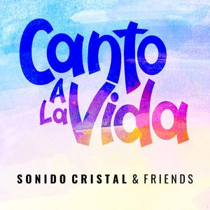 Canto a la Vida cover art