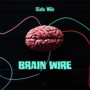 Brain Wire (Freestyle)
