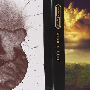 Mesh & Lace album