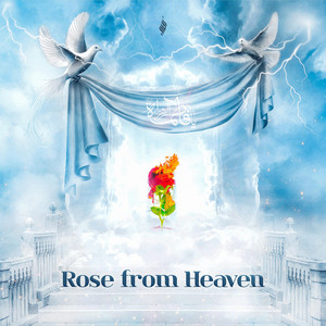 Rose from Heaven
