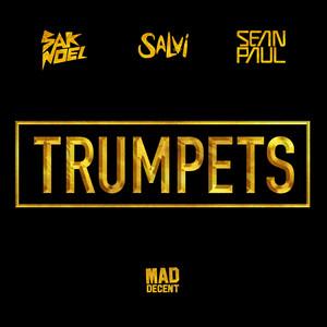 Sak Noel & Salvi Ft. Sean Paul – Trumpets (Acapella)