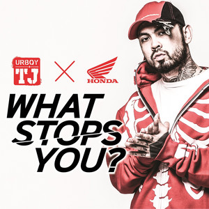 What Stops You? cover art