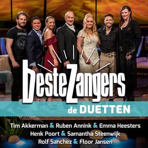 Beste Zangers Seizoen 12 (Aflevering 8 - Duetten) album