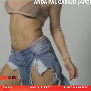 Anda Pal Carajo (APC)