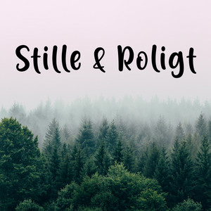 Stille og Roligt - Good vibes - Chill