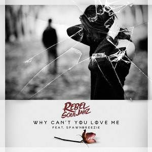 Why Can't You Love Me (feat. Spawnbreezie)