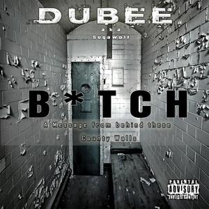 B*tch - Single