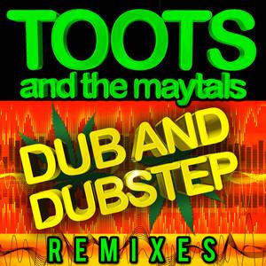 Dub and Dustep Remixes album