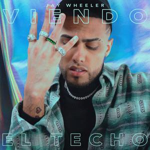 Viendo el Techo cover art