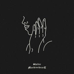 Shelter album cover