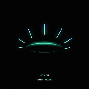 Say So (Vasco Remix)