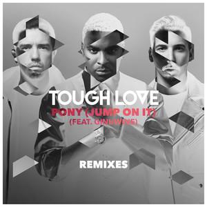 Tough Love ft. Ginuwine · Pony (Jump on it) (DJ Q Remix)