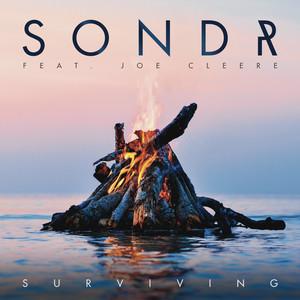 Surviving (feat. Joe Cleere)