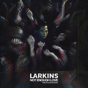 Not Enough Love (Principleasure Remix)