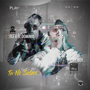 Tu No Sabes (feat. El Dominio)