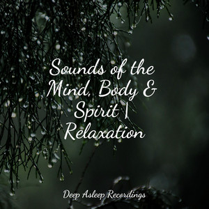 Sounds of the Mind, Body & Spirit | Relaxation