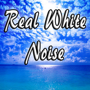 Real Fan Noise (White Noise)