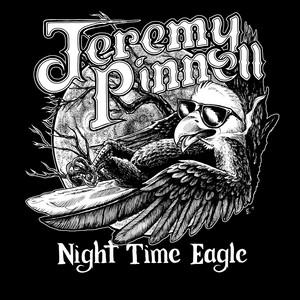 Night Time Eagle