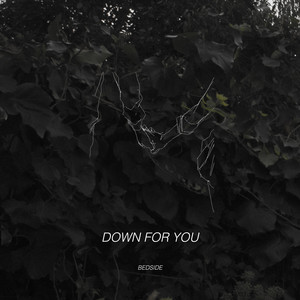Down For You