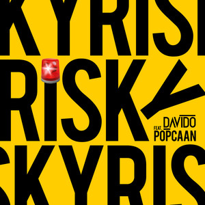 Risky cover art