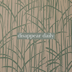 Disappear Daily - Ollie MN
