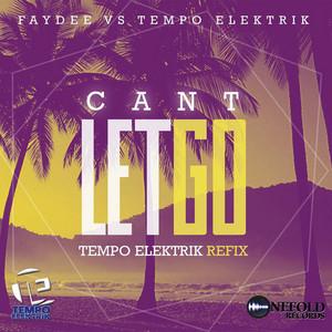 Can't Let Go (Faydee Vs. Tempo Elektrik)