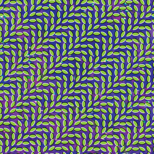 Merriweather Post Pavilion - Animal Collective
