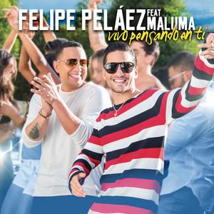 Vivo Pensando En Ti  - Felipe Peláez