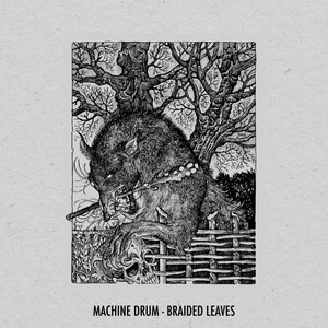 Braided Leaves by Machinedrum