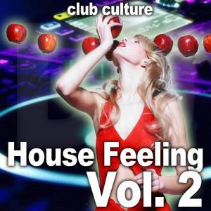 House Feeling, Vol. 2 (Club Culture) album