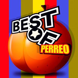 Best of Perreo