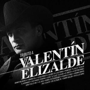 Tributo A Valentín Elizalde album