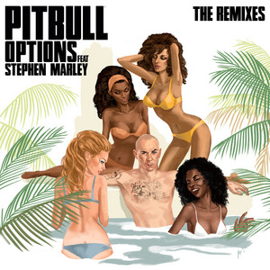 Options (The Remixes) (feat. Stephen Marley)