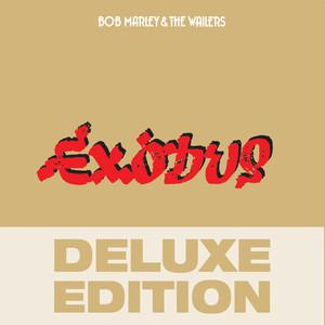 Bob Marley – Waiting In Vain (Acapella)