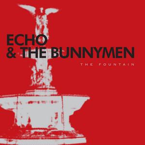 Echo & the Bunnymen